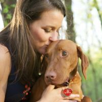Rover.com - dog sitters for day and overnight, dog walkers or check ins for day