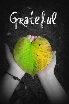 every moment that my heart remembers to be grateful...