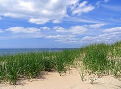 Oval Beach in Saugatuck, Michigan