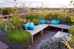 DESIGNER: CHARLOTTE ROWE, LONDON: ROOF GARDEN - A PLACE TO SIT - DECKED SEATING AREA WITH BLUE CUSHIONS AND HERBS - SAGE, CAMOMILE, VERBENA BONARIENSIS, ALLIUMS