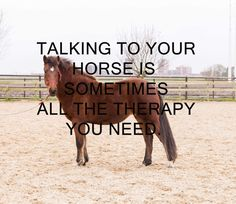 Talking To You, Therapy, Horses, Animals, Animales, Animaux, Healing, Animais, Counseling