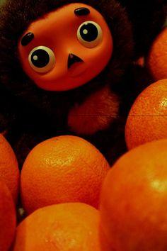 cheburashka ~ most adorable show.evaaa <3