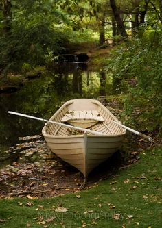 Loki's boat. Check out Morgan's review of Doug MacLeod's The Clockwork Forest here: http://chaptersandscenes.wordpress.com/2014/02/27/morgan-reviews-the-clockwork-forest/
