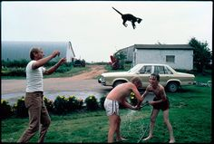 Cute-Cat-Lovers, watch em' Fly!  Photo by: stephen-scheer