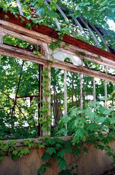 Abandoned greenhouse, Franklin Park, Boston, MA.