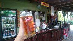 Pržana ryba a fritki. Zdravý polský oběd. Pivo pomůže zpracovat tuk.