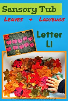 My Little Sonbeam: January Week 2: Alphabet {Lettler Ll} Letter of the week box. Writing and tracing worksheet. Alphabet letter L sensory tub, gross motor, and snack ideas. Counting and sorting activity.  {Homeschool preschool learning activities, curriculum, and lesson plans for ages 2 3 4}