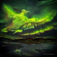 APOD: 2016 March 16 - A Phoenix Aurora over Iceland