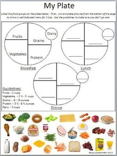 Printables My Plate Worksheets nutritional health worksheets whats on my plate mma diagram lifetime nutrition and wellness teks the student demonstrates knowledge of nutritionally balanced diets and