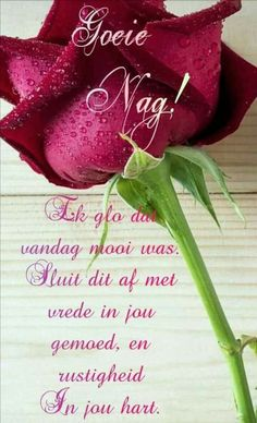 Good Night Blessings, Good Night Wishes, Good Morning Inspirational Quotes, Good Night Quotes, Glitter Paint For Walls, Good Morning Beautiful Images, Afrikaanse Quotes, Goeie Nag, Goeie More