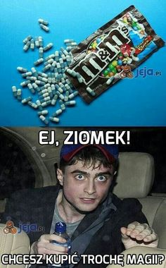 Polish Memes, Very Funny Memes, Fantastic Beasts And Where, Harry Potter Memes, Drarry, Best Memes, Haha, Funny Pictures, Hilarious