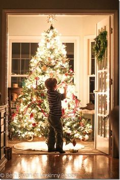 Image result for beautiful christmas trees