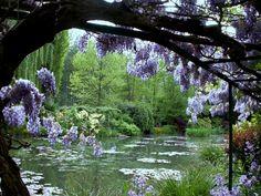 Maison et jardins de Monet - 214210
