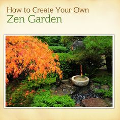 Want a Zen garden at home? Here is an easy guide to make one yourself! http://renaissanceholdings.com/blog/how-to-create-your-own-zen-garden/