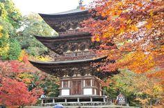全部知ってる?米国CNNが選んだ『日本の最も美しい場所』31選   RETRIP[リトリップ]