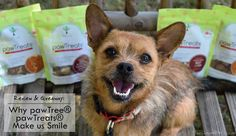 Review & Giveaway: Why pawTree® pawTreats Make us Smile #Sponsored