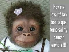 Hoy me levante...this is so funny!