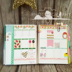 love this stunning planner spread from yvisphotography #eclifeplanner