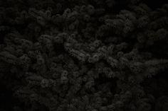 quotidien-noir-Goseong-Choi-03