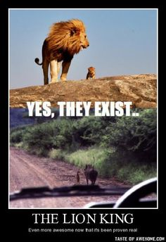 hahahaha. i love the lion king
