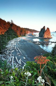 :Olympic National Pa