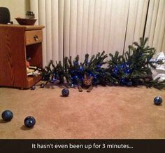 Funny Pictures Of The Day - 45 Pics