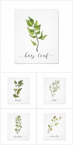 Watercolor Botanical Prints