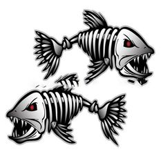 "Alligator GAR Sticker fishing lure Decal fish Vinyl truck boat window 42/""X12/"""