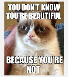 I wouldn't be speaking, grumpy cat 'cuz you aint so beautiful either, bro!