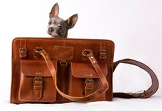 Amazon.com : Designer Leather Dog Carrier Brown 2 Pocket Purse Tote by Midlee : Pet Supplies Designer Dog Carriers, Cambridge Satchel, Leather Design, Dog Design, Pet Supplies, Messenger Bag, Pocket, Purses, Pets