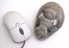 Double mouse! :)  Painted rocks by Roberto Rizzo | www.robertorizzo.com