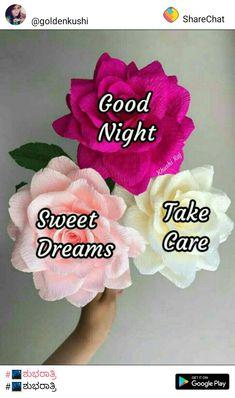 Good Knight, Good Night Greetings, Good Night Quotes, Good Morning Images, Sweet Dreams, Blessings, Allah, Holiday, Beautiful