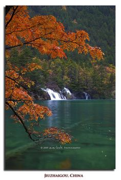 Jiuzhaigou National Park, Shuzheng Valley Sichuan Province China