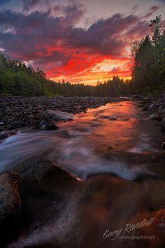 Rare Light    by Gary Randall, flickr