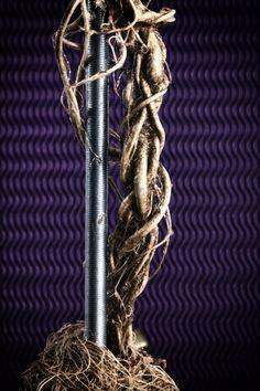 Organic Roots Lamp - close up