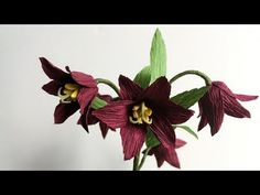 ABC TV | How To Make Chocolate Lily Paper Flower From Crepe Paper - Craf...