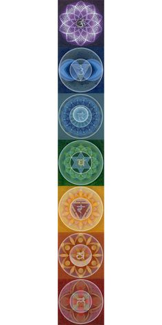 """Chakras are vortices of activity that receive, assimilate, & express energy in the form of emotions, thoughts, sensations, etc. The word """"chakra"""" is derived from the Sanskrit word for """"wheel"""" or """"turning"""", & refers to a spinning sphere of bioenergetic activity emanating from the major nerve ganglia branching forward from the spinal column.  Generally, 7 major subtle energetic centers are described, stacked in a column of energy that spans from the base of the spine to the crown of the head."""