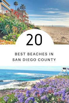 From iconic San Diego beaches to seaside towns nearby, we used TripAdvisor ratings and traveler reviews to narrow down the best beaches in San Diego County. The result? A highlight reel of iconic shores, family-friendly beaches, stunning state parks and long-beloved surf spots. Places To Travel, Places To Go, San Diego Beach, Seaside Towns, Vacation Rentals, Bay Area, Dream Vacations, Cali, State Parks