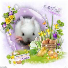 HÚSVÉTI ÜDVÖZLETEK - lelkemszirmai.lapunk.hu Easter Eggs, Happy, Happiness, Happy Easter, Easter Templates, Bonheur, Ser Feliz, Feeling Happy, Being Happy