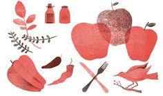 Illustrated cookbook, designed with Mucca Design.