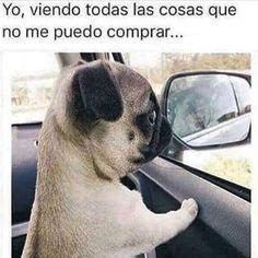 ?? #SonIdeas