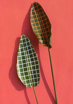 design, palm leaves, still life; Wonderplants | Sarah Illenberger