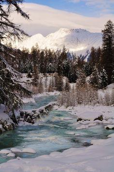 L'hiver est arrivé avec toute sa beauté....