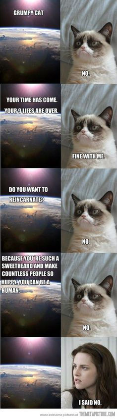 Your time has come, Grumpy Cat…