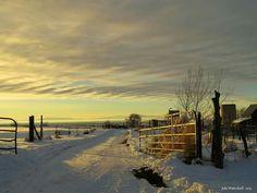 Oak City, Utah  farm sunset December 2015