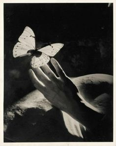 Peter Rose Pulham, Three Surrealist Studies With Hands And Butterflies, 1930