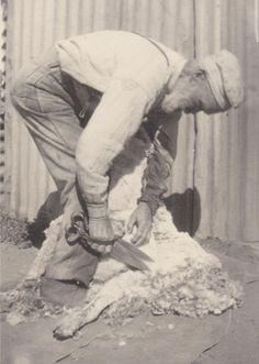 Tom Mathews, 'Maryanthea', Cobar. NSW.