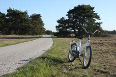 Wandelen en fietsen — Park Hoge Veluwe