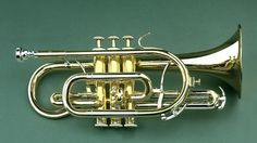 Bb-Cornet, this is what I play.