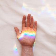 catch a rainbow.